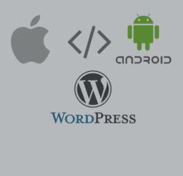 دبلوم مبرمج التطبيقات المتكامل