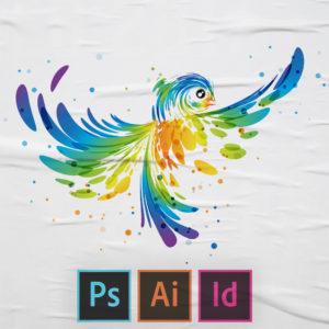 دبلوم التصميم الجرافيكي